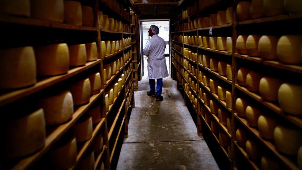 Agroindustria encabeza la estrategia comercial del sector lechero