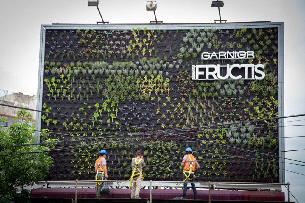 Fructis inaugura su segunda huerta solidaria en vía pública